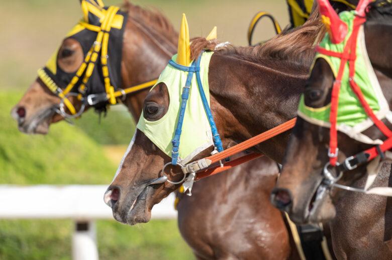 競馬,税金